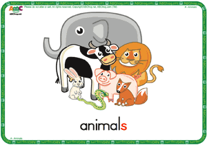 Animals - ESL Flash Cards - English for Kids