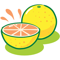 grapefruit - English for Kids - ESL Picture Dictionary