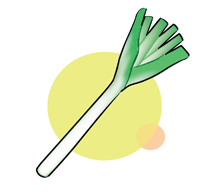 green onion - English for Kids - ESL Picture Dictionary