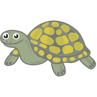 turtle - English for Kids - ESL picture dictionary